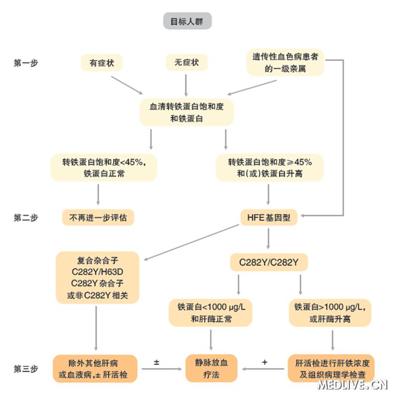 环形流程图模板