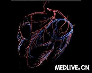 心脏工作示意图手绘