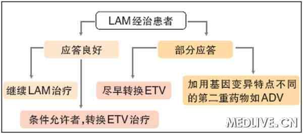 尽早转换ETV治疗时LAM经治患者的重要对应策略 第3届慢乙肝治疗难点热点学术会议