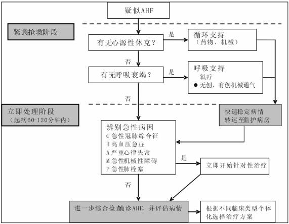 中国急性心力衰竭急诊临床实践指南(2017)发布